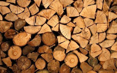 PPA : Reprise de l'exploitation du bois de chauffage et allègement des mesures!